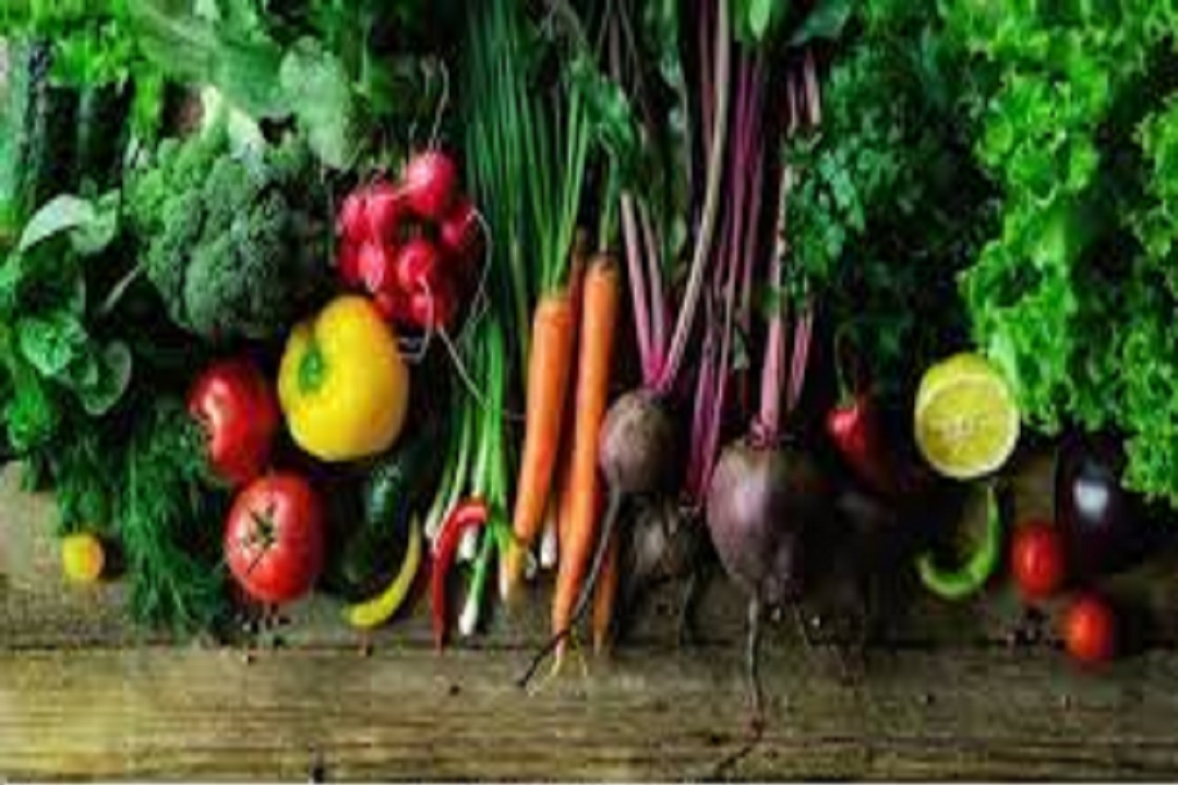 Introduction Of Organic Foods
